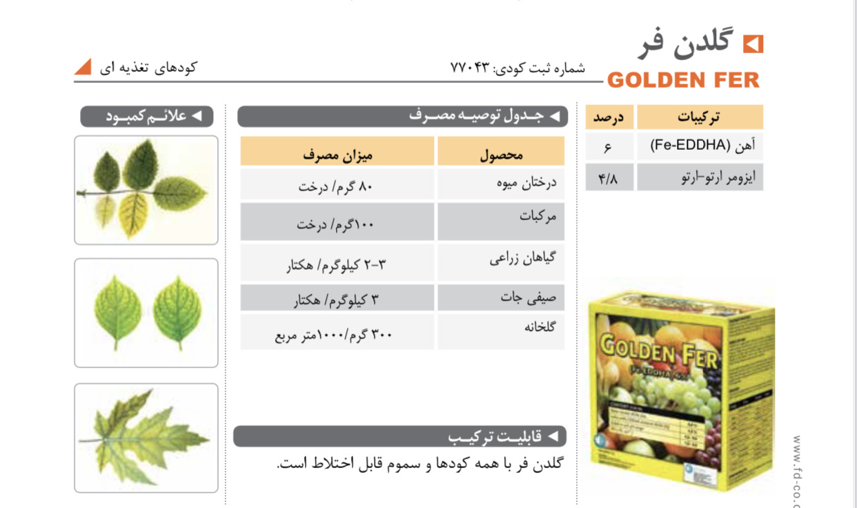 تامین کننده آهن در گیاه GOLDEN FER فیوچر